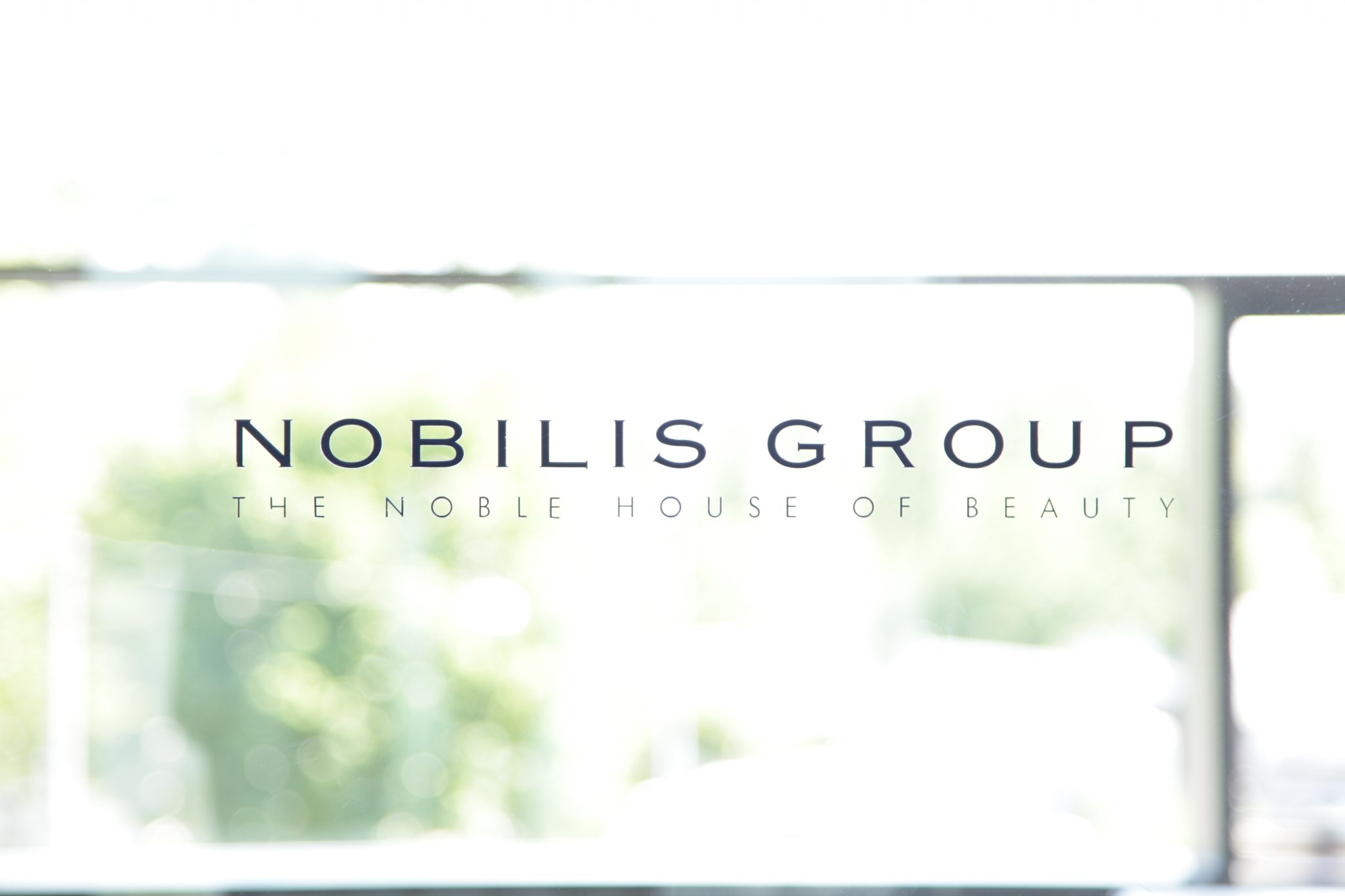Nobilis_Group1